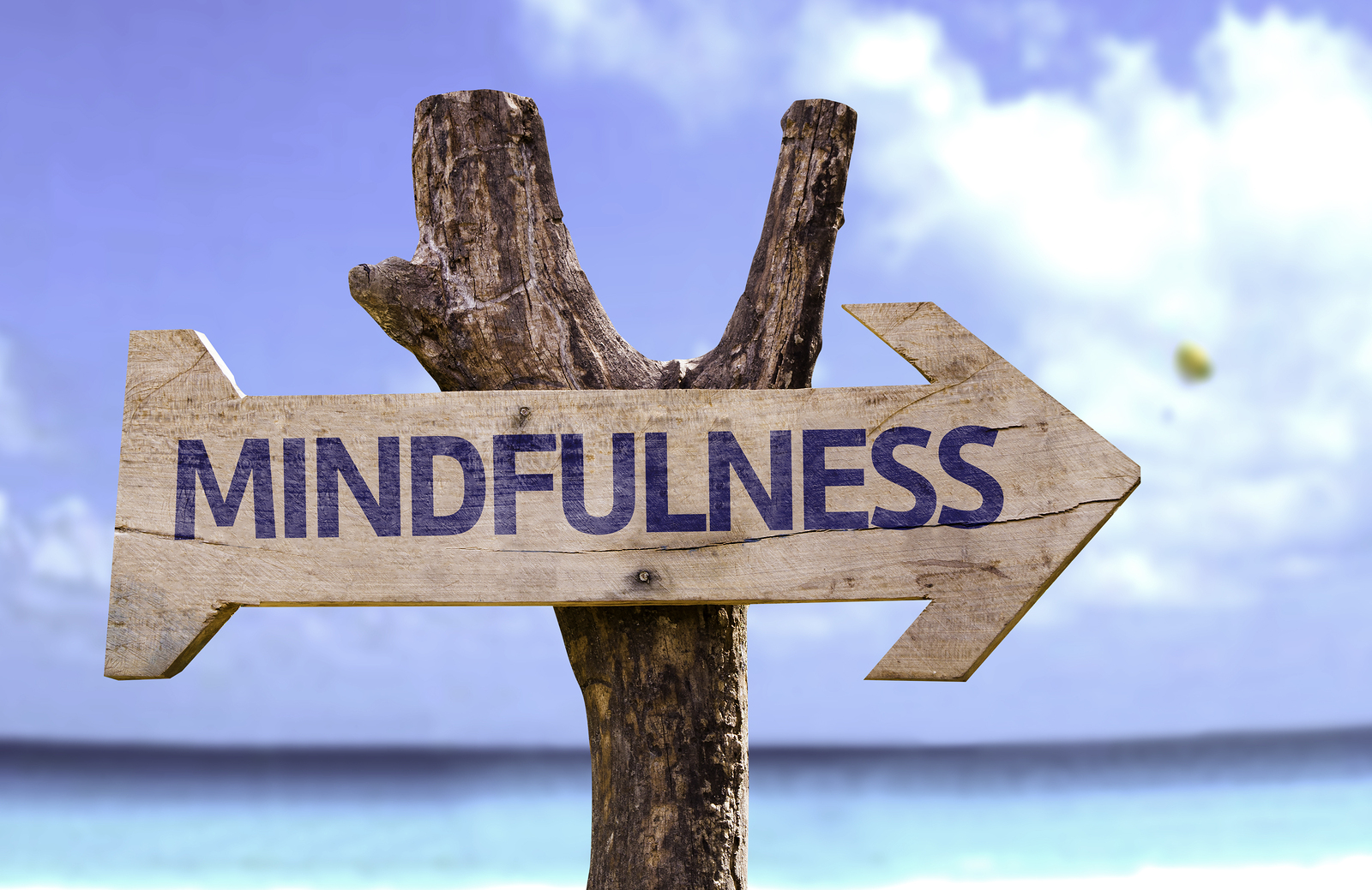 mindfulness mullumbimby district neighbourhood centre
