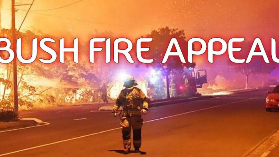 BUSH-FIRE-appeal-1